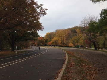 another look at fall in prospect park